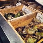 Bacs d'huîtres variées chez JEF