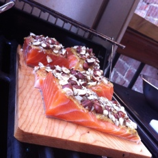 Pavés de saumon avant la cuisson