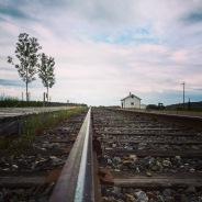 Dès ma première visite, j'ai eu un grop coup de coeur pour ce chemin de fer